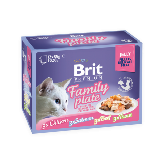BRIT POUCH JELLY FILLET FAMILY PLATE (12x85g)