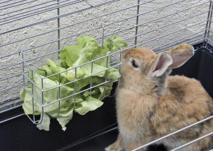 KERBL Paśnik metalowy dla królików 17x13cm [82783]