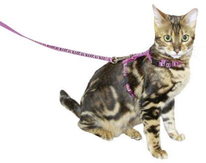 KERBL Szelki dla kota ze smyczą [82668]