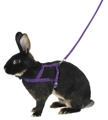 KERBL Uprząż dla królika