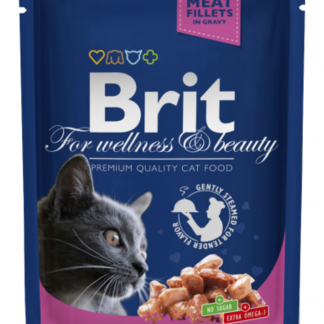 BRIT POUCHES SALMON & TROUT 100 g