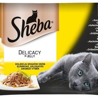 SHEBA Delicacy in Jelly Drobiowe Smaki 4x85g [283348]