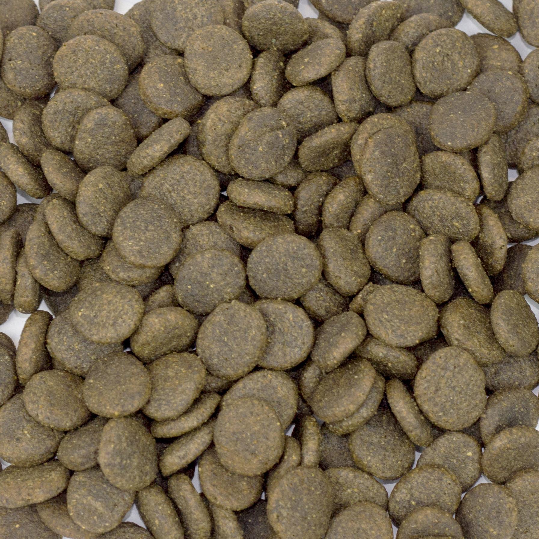 Łosoś i pstrąg ze szparagami dla psów 12kg