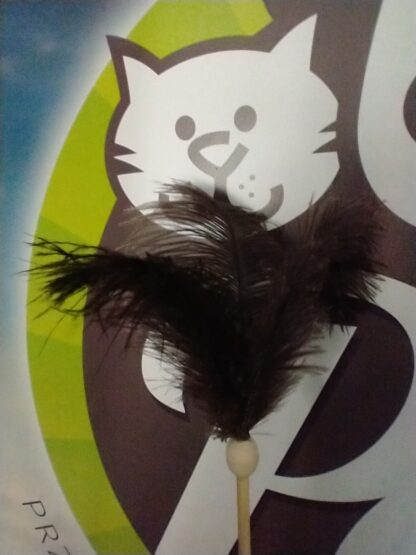 propet zabawka dla kota